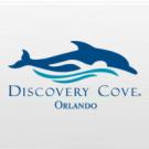 Discovery Cove Ultimate - Criança até 2 anos